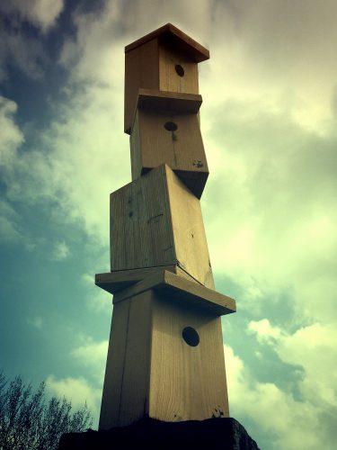 birdhouse_IMG_4197